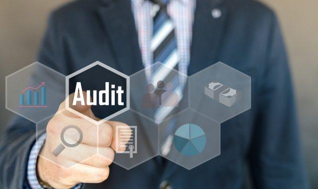 AI Audit